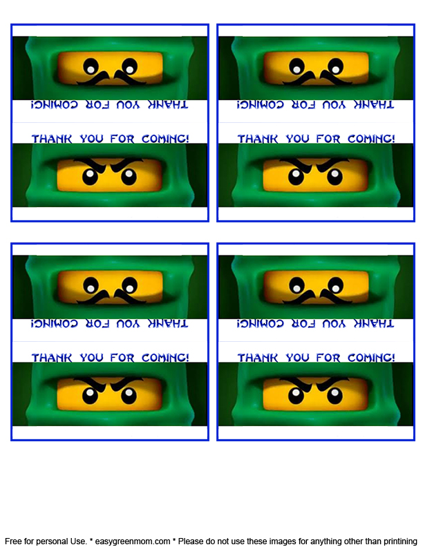 photograph about Free Printable Lego Labels referred to as Lego Ninjago Bash Want Guidelines - Rays of Bliss