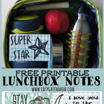 School Lunchbox Notes Free Printable ~ Cute Doodles