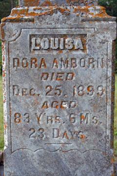 Louisa Amborn