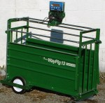 Market Hog Scale, Digital, with optional wheel & handle kit