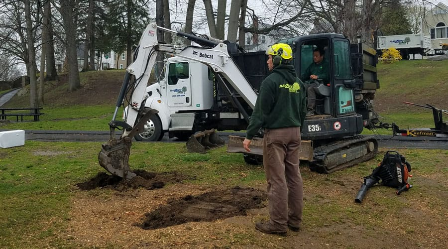 Rayzor's Edge Tree Service digging a hole to plant a tree