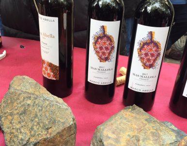 Vino y Geología en la comarca del Priorat