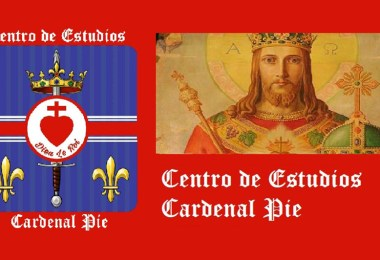 Centro de Estudios Cardenal Pie banner