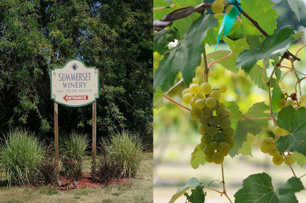 Summerset-Winery-wedding-Amanda-Seth-002