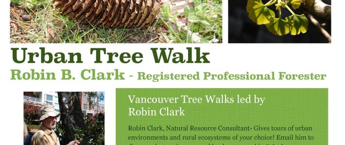 Urban Forest Tour Vancouver