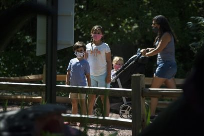Guests wear the required face masks and maintain a safe 6-feet away from others while exploring the Dino's Everywhere exhibit on July 2, during a members only day at the Brookfield Zoo. (Alex Rogals/Staff Photographer)