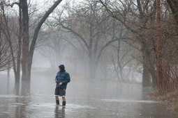 Zilvinas Kunickas surveys flooded Forest Avenue in Brookfield as sump pumps worked to get water out of his basement.