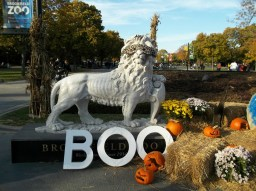 One of the lion statues adorned with a mask for the special Halloween occasion. (photo courtesy Chris Stach)
