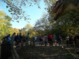 """""""Trick or treat, everybody! YOU be the TREATS!"""" says the T-Rex. (photo courtesy of Chris Stach)"""