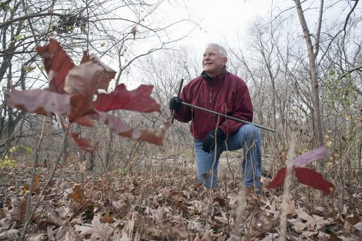 Branching out: Tom Sisulak poses between two young oak trees he planted near the edge of the Des Plaines River in Riverside. He will lead the 8th-annual 1,000 Tree Planting Project this weekend. DAVID PIERINI/Staff Photographer