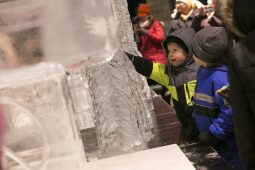 Two little boys admire an ice carving sculpture at the Brookfield Zoo on New Years Eve.   Rick Majewski/Contributor