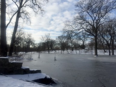 Swan Pond Park resembled a sheet of ice after water that backed up behind an ice jam in the bend of the river poured into the area on Feb. 16-17. (Photo by Bob Uphues)