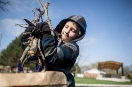 Isaiah Sokol helps pick up branches in Kiwanis Park during the Brookfield Beautification Commission's spring Project NICE community-wide cleanup day. | William Camargo/Staff Photographer