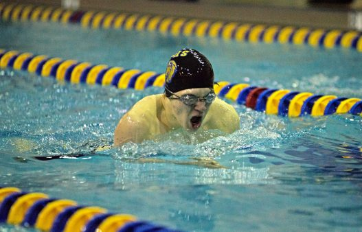LT's Ben Lynch swims on Friday, Jan. 19, 2018, during a swim and dive meet at Lyons Township High School South Campus in La Grange, Ill.