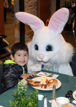 Brookfield Zoo, 3300 Golf Road in Brookfield, hosts Breakfast with the Easter Bunny for families on March 31 with seatings at 9 a.m. and 11 a.m. at the Discovery Center.
