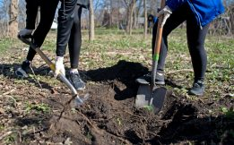 Students dig holes throughout the area on April 28, during the Riverside Brookfield High School Day of Service at Indian Gardens in Riverside. | Alexa Rogals/Staff Photographer
