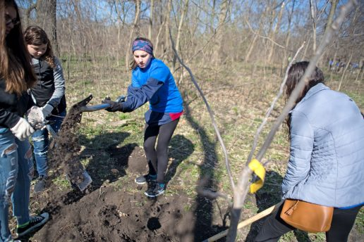 Students dig out dirt from an area where they will be planting a pecan tree together on April 28, during the Riverside Brookfield High School Day of Service at Indian Gardens in Riverside. | Alexa Rogals/Staff Photographer