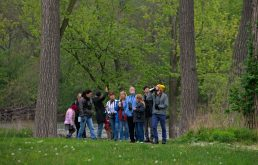 A group traveling from the Riverside Public Library to the Scout Cabin look for birds during a guided tour on World Migratory Bird day, May 12, along the river in Riverside. | Alexa Rogals/Staff Photographer