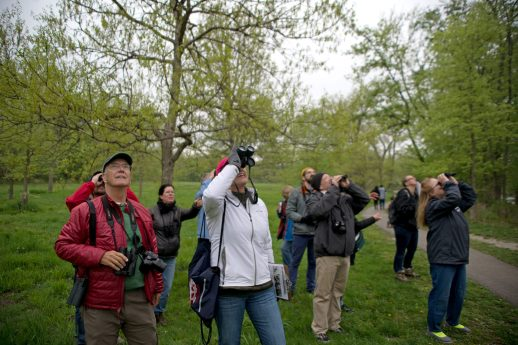 Participants watch for birds during a guided tour on World Migratory Bird day, May 12, along the river in Riverside. | Alexa Rogals/Staff Photographer