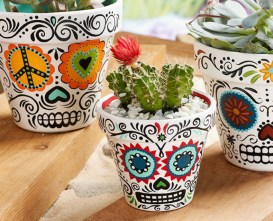 North Riverside Public Library invites you to sign up for the grab-and-go craft activity Day of the Dead Flower Pots/Dia de los Muertos Macetitas de Calaveritas.