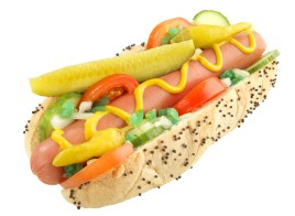 "Brookfield Public Library invites you to celebrate the Chicago dog on Dec. 3 during the Zoom presentation ""No Ketchup."""