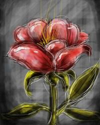 Artwork by Anna Pimentel-Saavedra