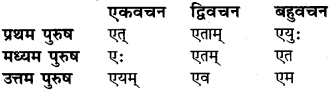 RBSE Class 6 Sanskrit व्याकरण धातु-रूपम् 5