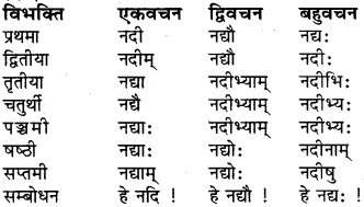 RBSE Class 6 Sanskrit व्याकरण शब्द-रूप प्रकरणम् 10