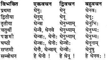 RBSE Class 6 Sanskrit व्याकरण शब्द-रूप प्रकरणम् 11