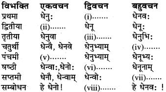 RBSE Class 6 Sanskrit व्याकरण शब्द-रूप प्रकरणम् 17
