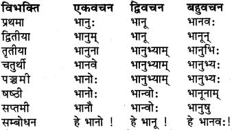 RBSE Class 6 Sanskrit व्याकरण शब्द-रूप प्रकरणम् 5