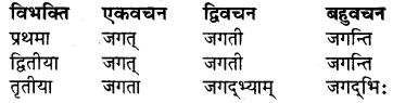 RBSE Class 7 Sanskrit व्याकरण शब्द रूप प्रकरणम् 14