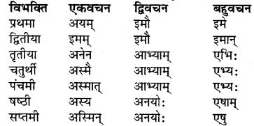 RBSE Class 7 Sanskrit व्याकरण शब्द रूप प्रकरणम् 19