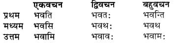 RBSE Class 7 Sanskrit व्याकरण शब्द रूप प्रकरणम् 39