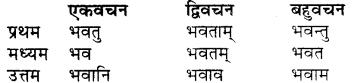 RBSE Class 7 Sanskrit व्याकरण शब्द रूप प्रकरणम् 42