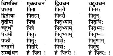 RBSE Class 7 Sanskrit व्याकरण शब्द रूप प्रकरणम् 6