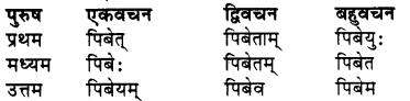 RBSE Class 7 Sanskrit व्याकरण शब्द रूप प्रकरणम् 68
