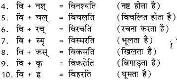 RBSE Class 8 Sanskrit व्याकरण उपसर्ग - 11