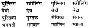 RBSE Class 9 Hindi व्याकरण लिंग 16