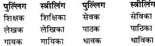 RBSE Class 9 Hindi व्याकरण लिंग 8