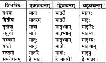 RBSE Class 9 Sanskrit व्याकरणम् 23