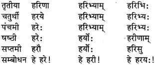 RBSE Class 9 Sanskrit व्याकरण रूप-प्रकरणम् 3