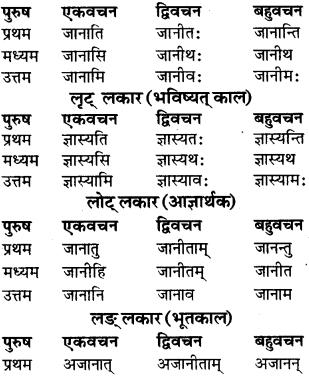 RBSE Class 9 Sanskrit व्याकरण रूप-प्रकरणम् 62