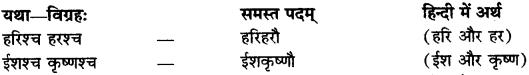 RBSE Class 9 Sanskrit व्याकरण समास-प्रकरणम् 20