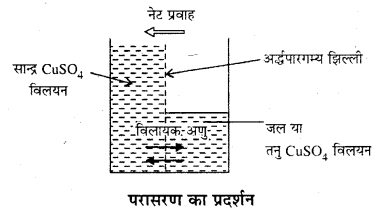 RBSE Solutions for Class 12 Chemistry Chapter 2 विलयन image 6