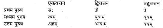 RBSE Class 10 Sanskrit व्याकरणम् कारकम् image 3