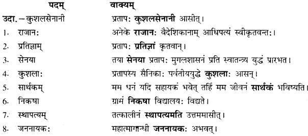 RBSE Solutions for Class 10 Sanskrit स्पन्दन Chapter 6 महाराणा प्रतापः 5