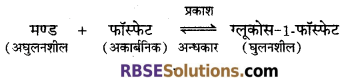 RBSE Solutions for Class 12 Biology Chapter 7 वाष्पोत्सर्जन व बिन्दुस्राव 6