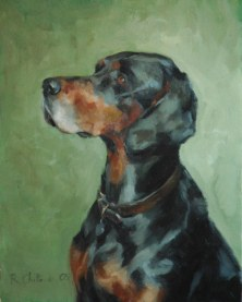 An example of an Animal Portrait by Rosanna Chittenden