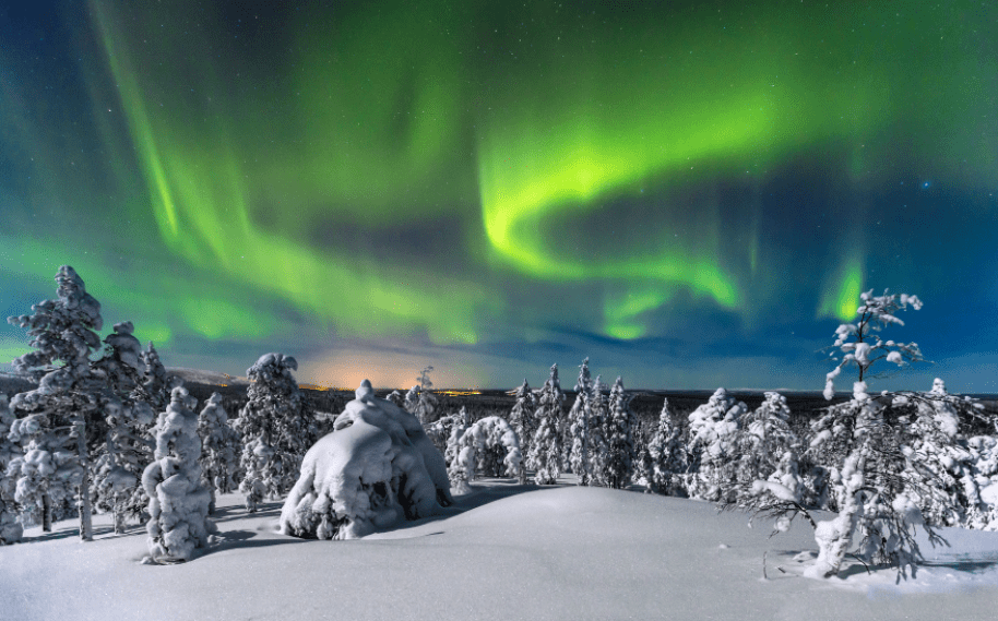 Northern lights dancing in the sky above a snow covered forest in Finland